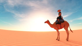 Desert. Image of riding camel on the desert Stock Images