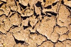 Desert. Dry earth in the hot desert Stock Photos