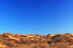 Desert. The desert in winter day Royalty Free Stock Photography