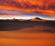 Desert. Sahara desert in Merzuga ,Morocco Royalty Free Stock Photo