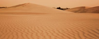 Desert. Beautiful sand dunes in the desert of jailsamer, rajasthan, north of india Royalty Free Stock Images