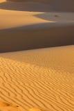 Desert. Dunes in desert, nobody, background Royalty Free Stock Photos