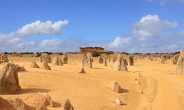 Desert. The pinnacles desert west-australia stock photography