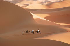 The desert Royalty Free Stock Photography