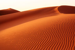 Desert Royalty Free Stock Photo