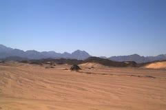 Desert 6 Royalty Free Stock Photos