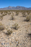 Desert. Mountains in the national park Mojave with blue sky royalty free stock images