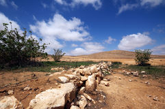 Desert. Stone walls and light clouds in middle eastern desert Royalty Free Stock Photo