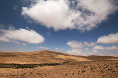 Desert. A middle eastern desert, blue sky and light clouds Royalty Free Stock Photography
