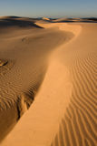 Desert. Stockton sand dunes in Anna Bay, NSW, Australia. Beautiful sand ripples and curves with dramatic shadows stock image