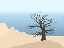 Desert. Lonely dry tree in desert. Vector illustration Stock Image