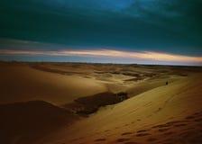 Free Desert Royalty Free Stock Images - 8284159