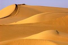 Desert Royalty Free Stock Photos