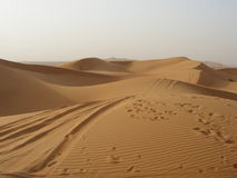 The desert Stock Images
