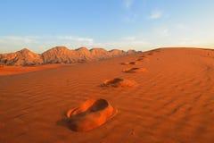Desert. Landscape just before sunset Stock Photography