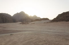 Desert in Africa. ATV safaris. Excursions in Egypt Stock Photography