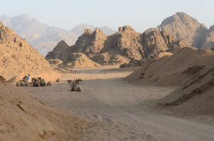Desert in Africa. ATV safaris. Excursions in Egypt Stock Image