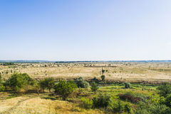 Desert in africa is visible in the distance. Desert in Africa. The dry summer all turned yellow Stock Photography