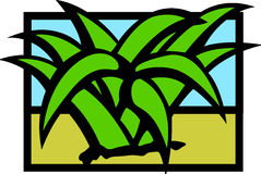 Desert agave or maguey plant vector illustration Stock Images