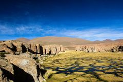 A desert on the altiplano of the andes in Bolivia Stock Photography