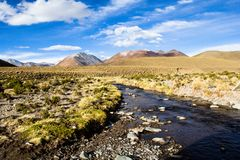 A desert on the altiplano of the andes in Bolivia Royalty Free Stock Photos