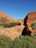 Desert. Amazing  hikeing around Stock Photography