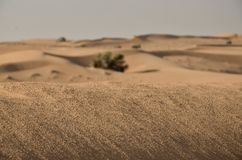 Desert arabic Royalty Free Stock Images