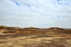 Desert Arava. Fragment of the southern stretch of the desert Arabah(Arava), Israel Royalty Free Stock Images