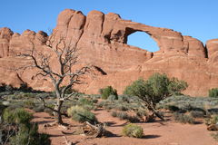 Desert arch Royalty Free Stock Photography