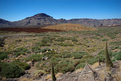 Desert area in Tenerife 2. This is a desert area in the central part of Tenerife. It is next to El Teide (the highest mountain in Spain, not just in the Spanish Royalty Free Stock Image