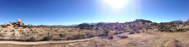 The Desert in Arizona. Panorama of the desert in Arizona Royalty Free Stock Image