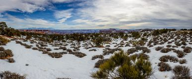Winter Desert in Arizona, USA. Desert in Arizona with rare desert plants covered with clean white snow under beautiful clouds. Canyon is seen on the background Royalty Free Stock Image