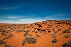Desert in Arizona Stock Photos