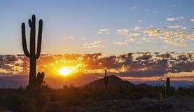 Free Desert AZ Sunrise Skies With Cactus Stock Images - 161018194