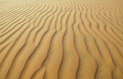 The desert background Royalty Free Stock Photo