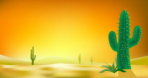 Desert background cactus  illlustration 1 Stock Photo
