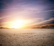 Desert background Stock Photography