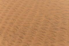 Desert background Royalty Free Stock Photography