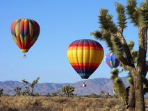 Desert Balloons. Hot air balloons over California desert royalty free stock photos