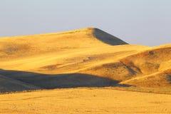 Desert. Barkhans. Desert landscape. Asia. Kazakhstan. Royalty Free Stock Photos