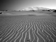 Desert beauty. Dunes between Shannah and Al Ashkharah, Oman Stock Images