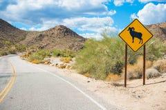 Desert Bighorn Sheep Sign Royalty Free Stock Image