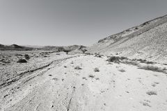 Desert in black and white Royalty Free Stock Photo