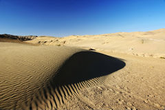 Desert with blue sky Royalty Free Stock Images