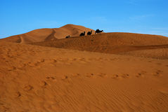 Desert with blue sky and stone camel. This photo is for a small desert in ShanShan xinjiang China, with yellow desert and blue skys, on the top of sand hill Royalty Free Stock Images