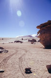 Desert in Bolivia. Siloli Desert in Bolivia, stone tree growing out of the sand in the middle of the Andes Royalty Free Stock Photography