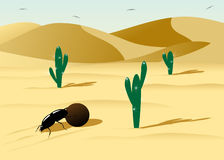 Desert. Royalty Free Stock Image