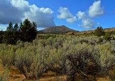 Desert Butte. Gray Butte - Crooked River National Grassland near Culver, OR stock photography