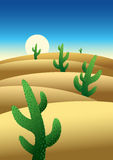 Desert and cactus Stock Images