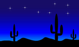 Desert with cactus plants. Night Stock Photography